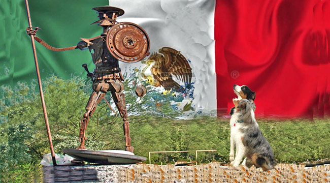 Mexico.GW_650x360