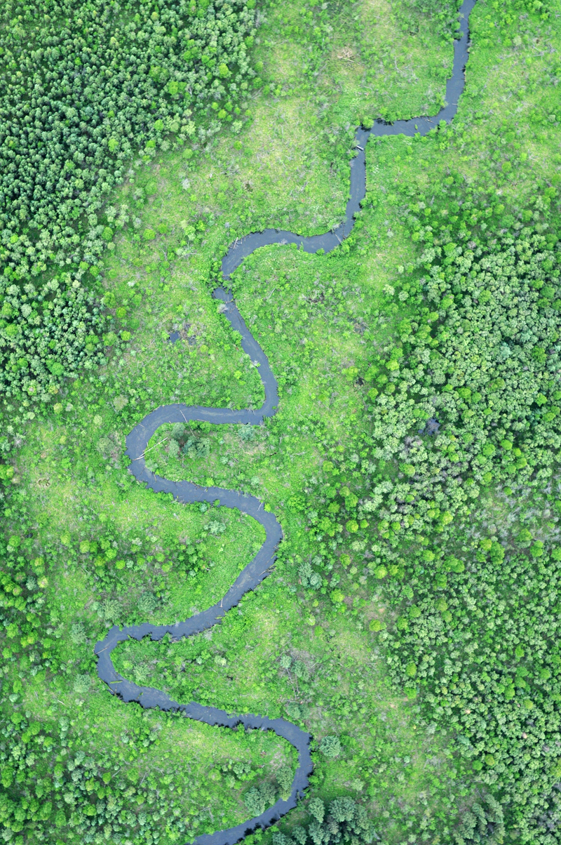 An aerial photo of a stream winding through Tanana Flats taken by pilot Jessica Cherry. (Photo by Jessica Cherry)