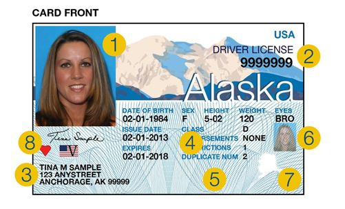 Some features of the new Alaska driver's license include a new design of Denali, fine line patterns like those on dollar bills, and a laminate with a hologram of snowflakes and the state seal. (Image from Division of Motor Vehicles)