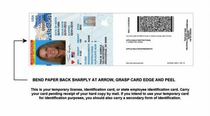 DMV will issue a temporary license while a new one gets mailed within 2-4 weeks. The temporary license is a paper replica valid for 60 days. (Image courtesy of Division of Motor Vehicles)