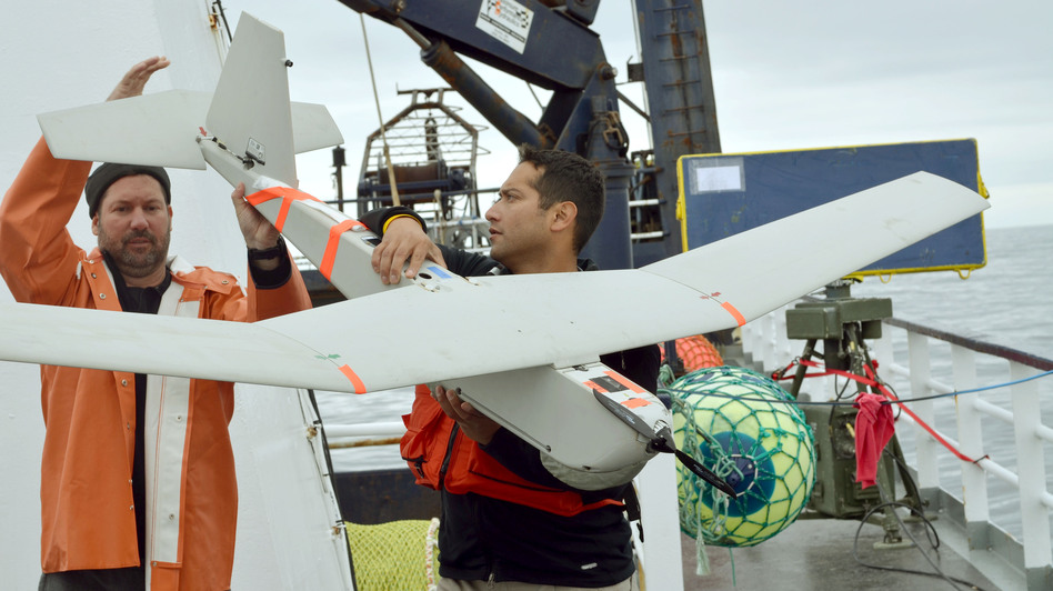 A 2011 photo shows an AeroVironment Puma drone being prepared for launch by University of Alaska researchers. The FAA says it approved BP's use of the drone to survey oil fields in Alaska. Keith Cunningham/AP