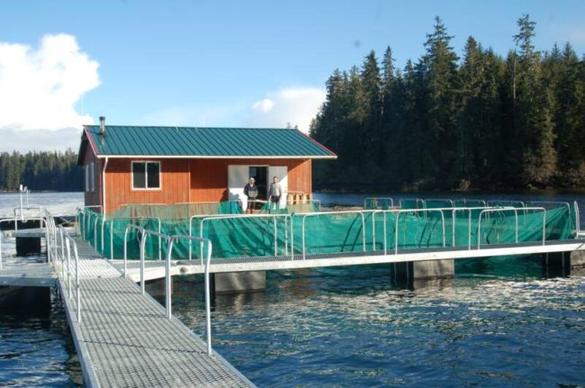 The Gunnuk Creek hatchery remote rearing site. (Photo courtesy Gunnuk Creek Hatchery website)