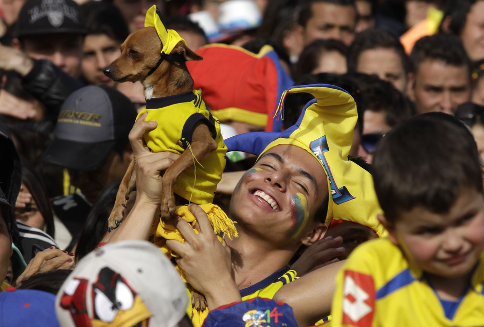 A Colombia soccer fan holds up his dog and celebrates a goal against Uruguay as he watches the World Cup round of 16 match on TV with others in Bogota, Colombia on Saturday. Javier Galeano/AP