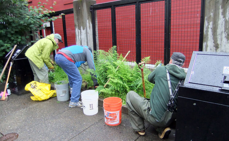 Volunteers pull weeds from green areas. (Photo by Rosemarie Alexander)