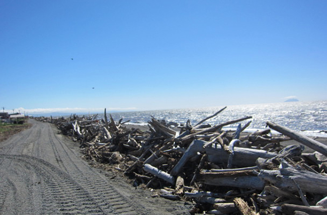 The beginning of the Shaktoolik coastal berm. (Photo by Anna Rose MacArthur/KNOM)