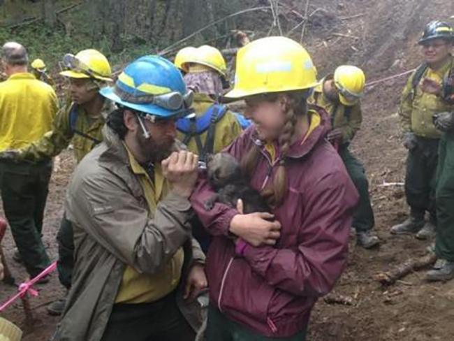 Medics Rescue a Cub. (Photo courtesy of Stephen Miller, Kenai National Wildlife Refuge Deputy Manager)