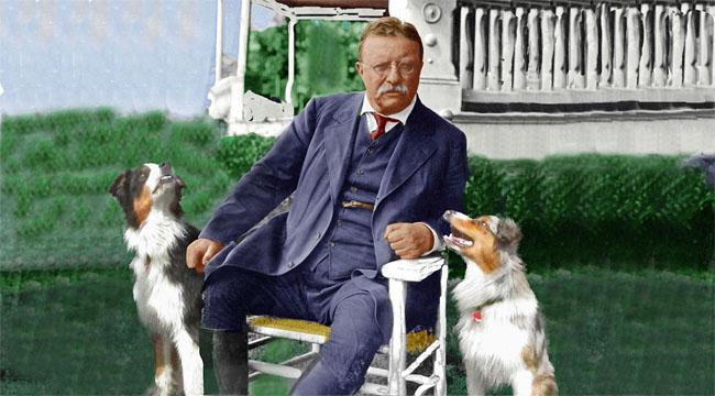 Roosevelt.GaWy_650x360