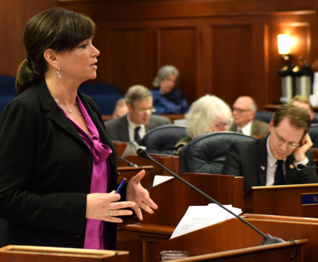 """Rep. Charisse Millett, R-Anchorage, wraps up debate on House Bill 44, also known as """"Erin's Law,"""" in the Alaska House of Representatives on Saturday. (Photo by Skip Gray/360 North)"""