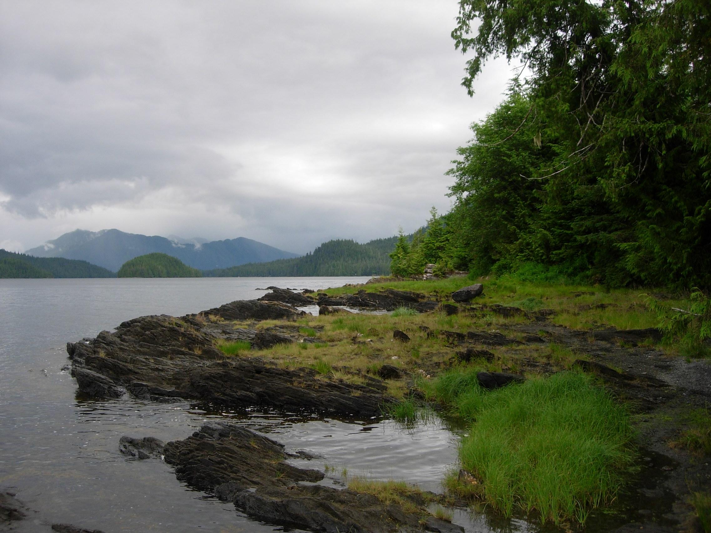 Tongass National Forest near Ketchikan, Alaska. (Creative Commons photo by Mark Brennan)