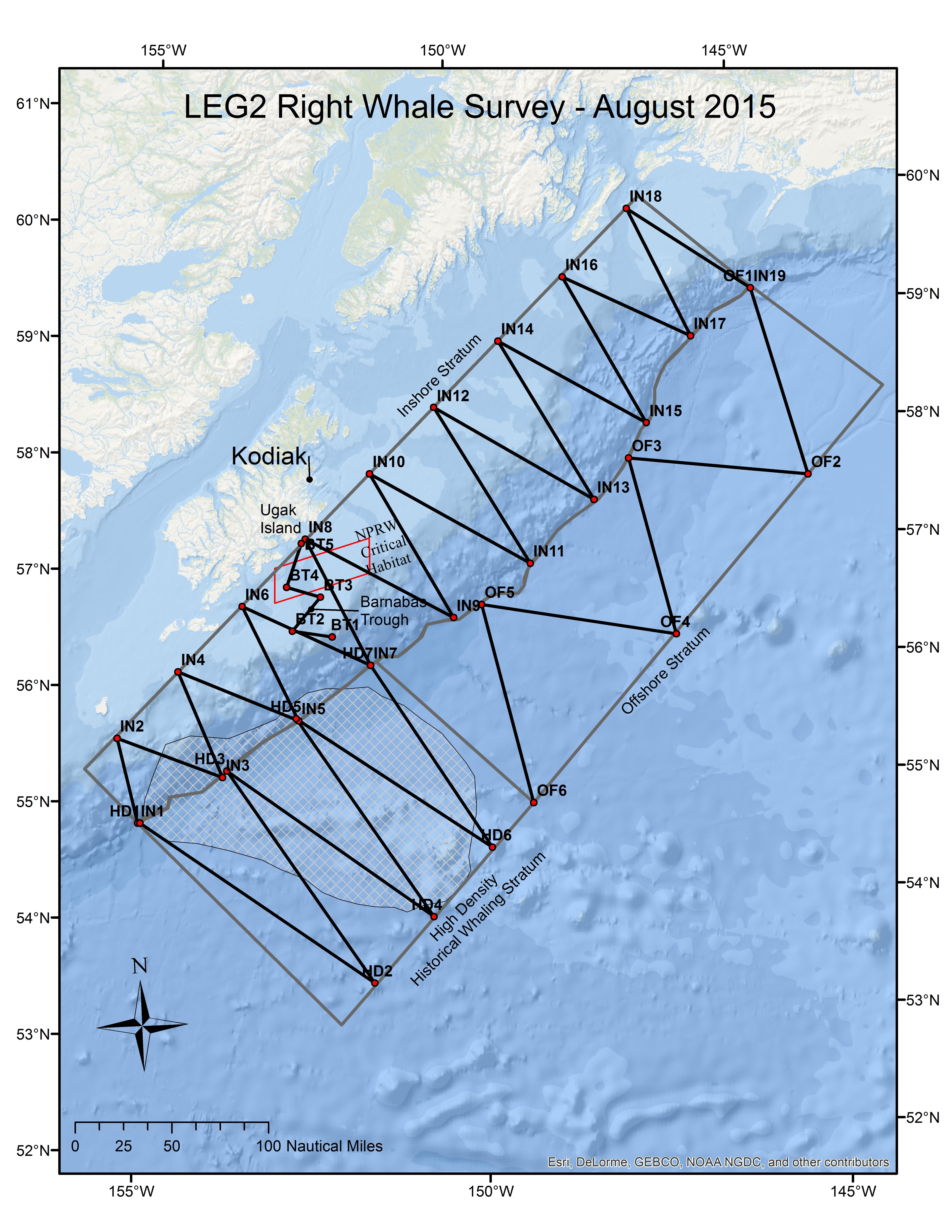 Looking And Listening For Alaska39s Rarest Whale
