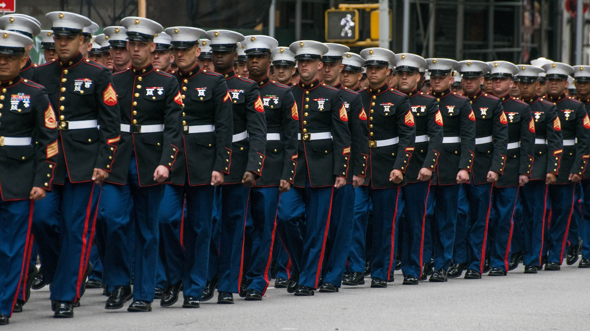 2015 Veterans Day parade in NYC