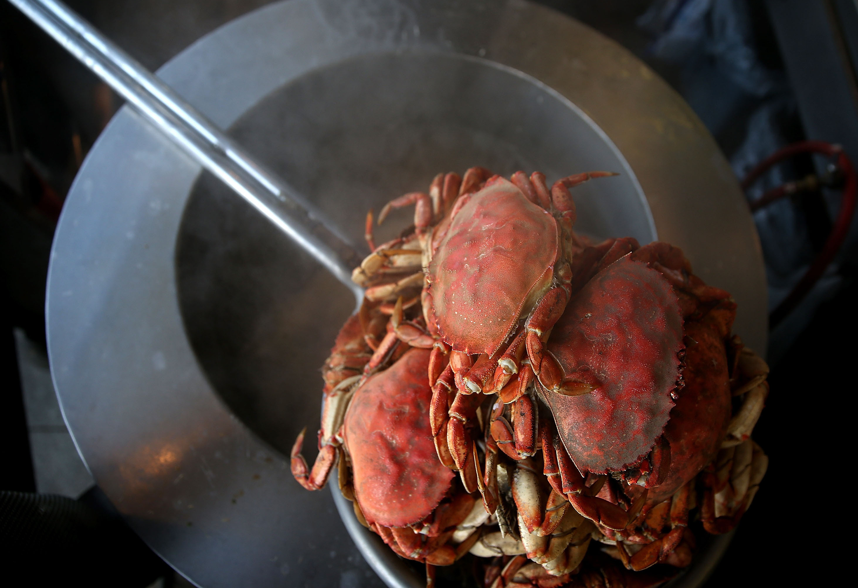 Freshly cooked Dungeness crab sits on a pot of boiling water at Nick's Lighthouse Restaurant in San Francisco, Nov. 5, 2015. Justin Sullivan/Getty Images