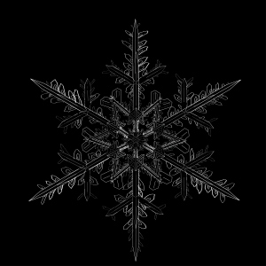"""Snowflake by Sarah DeGennaro from the """"Letters from the Sky"""" art installation to be premiered on Thursday, Dec. 31, at the UA Museum of the North. (Photo courtesy of Museum of the North)"""