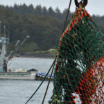 Salmon opener in Kodiak commercial fishing gear