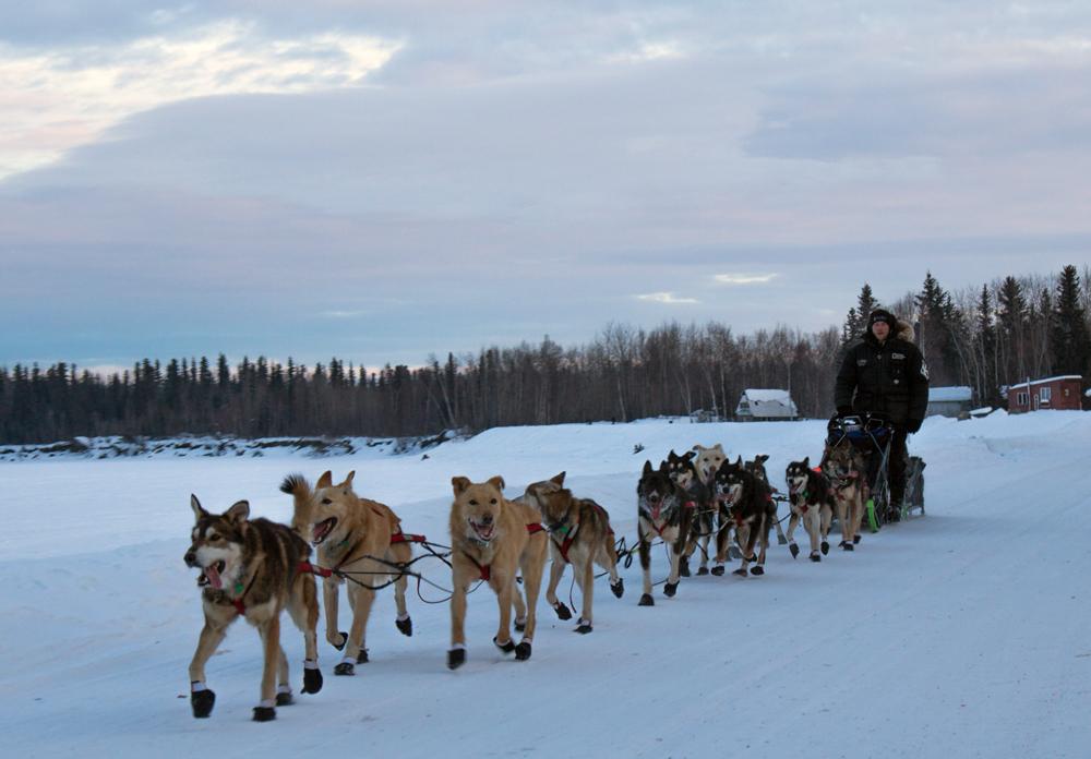 Dallas Seavey in McGrath on Iditarod trail