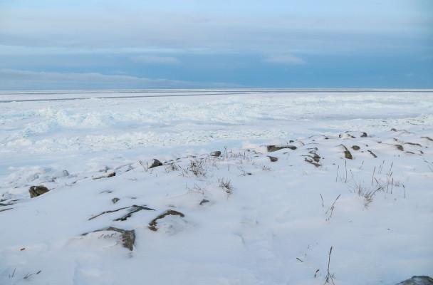 Shishmaref Sea Ice. (Photo by Maddie Winchester/KNOM)