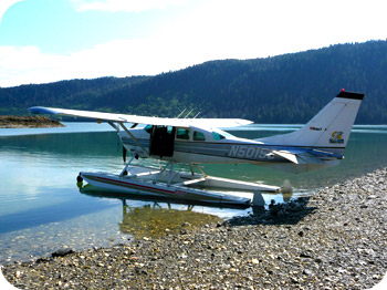 A photo of a Cessna 206 from Sunrise Aviation's website.