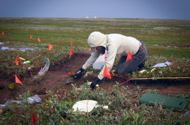 An excavator works at what was once an ancient settlement at Cape Espenberg. (Photo courtesy of Bering Land Bridge National Preserve)