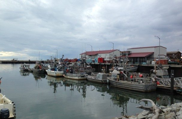 Fishing vessels at the Nome harbor. (Photo Matthew Smith/KNOM)