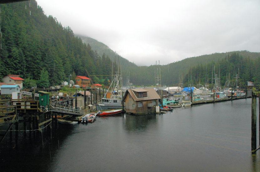 Elfin Cove