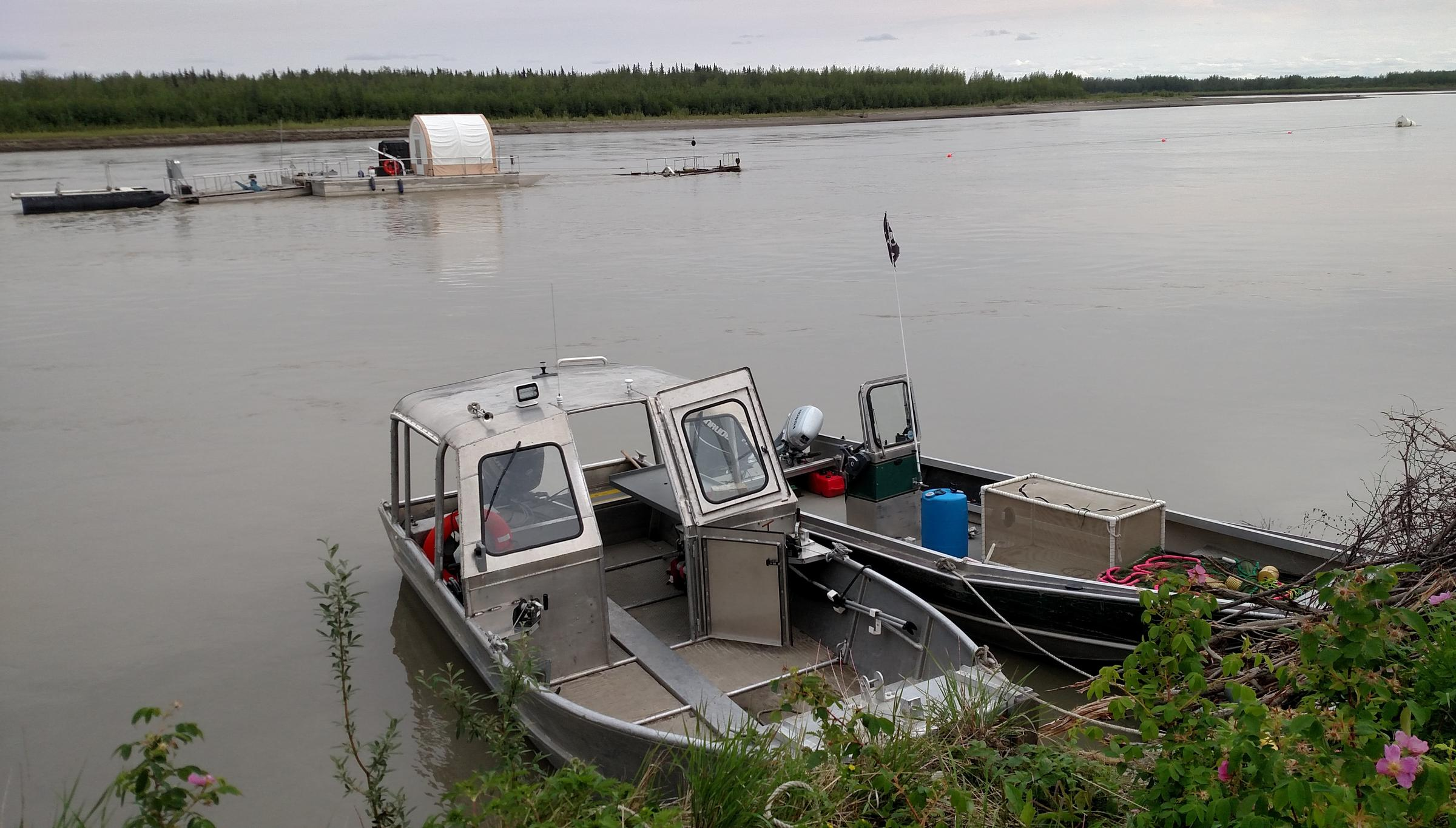 The hydrokinetic turbine being tested by UAF in Nenana is suspended into the Tanana River from the middle of three platforms, at left. The bouy in the upper right marks the point where the barges are anchored to the river bottom. The debris diverter is located between the bouy and barges. (Photo by Tim Ellis/KUAC)