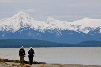 Chilkat Range from Eagle Beach
