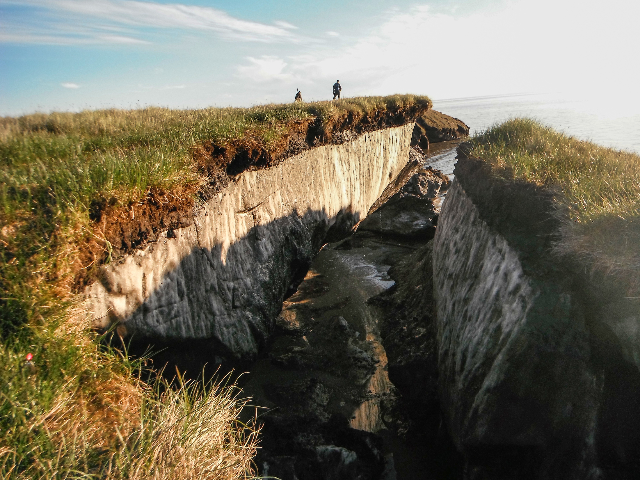 Coastal erosion reveals the extent of ice-rich permafrost underlying active layer  in the Teshekpuk Lake special area of Alaska's National Petroleum Reserve . (Photo: Brandt Meixell/USGS)