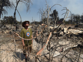 James McCauley looks over the burned-out remains of his residence in the town of Lower Lake, Calif. (Josh Edelson, Associated Press)