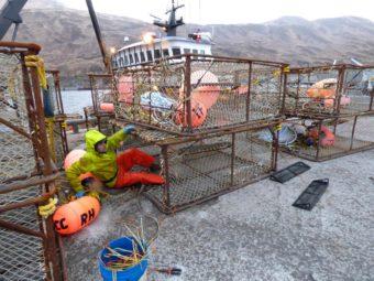 An Unalaska fisherman prepares for tanner crab season. (Photo by KUCB)