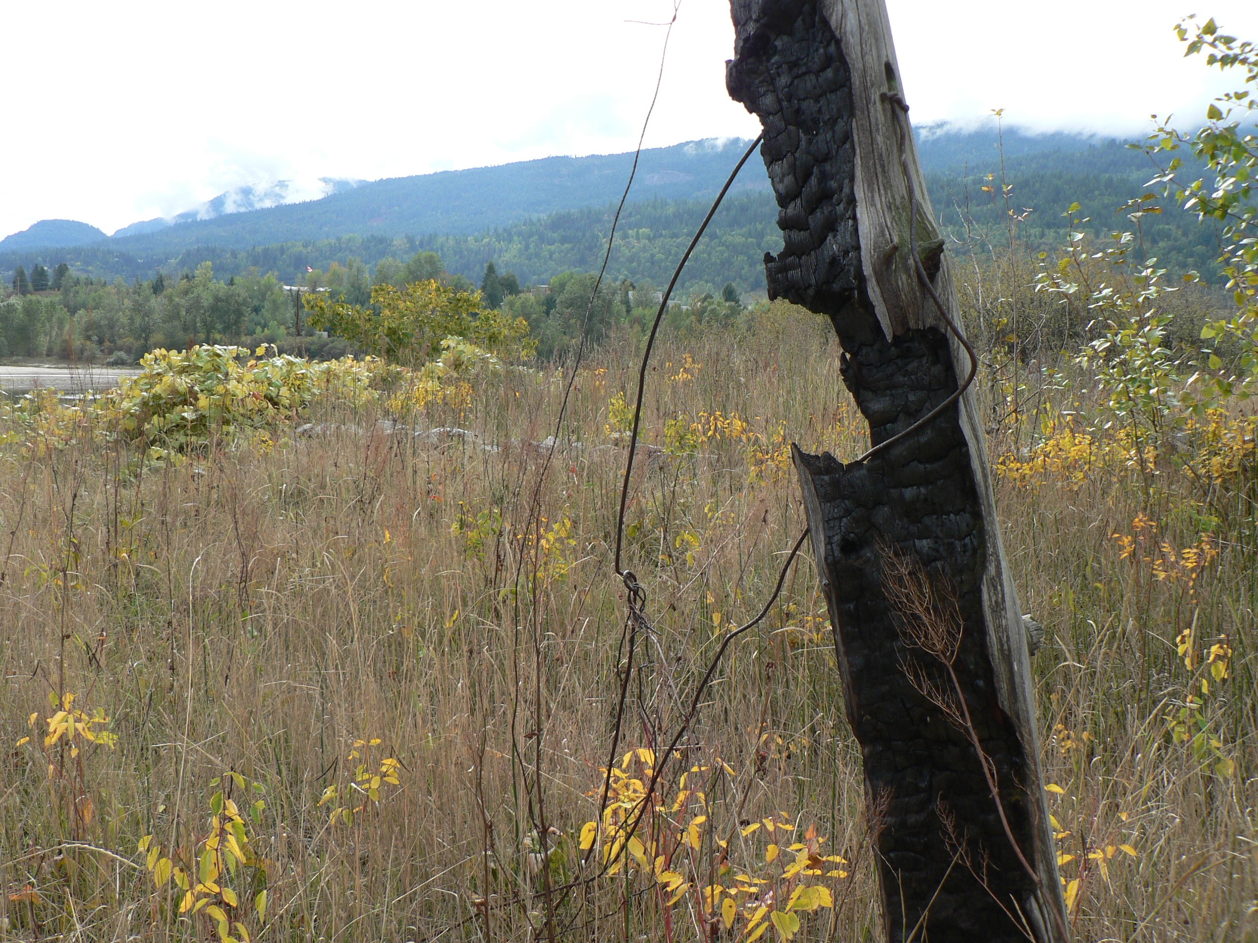 sinixt village site in british columbia