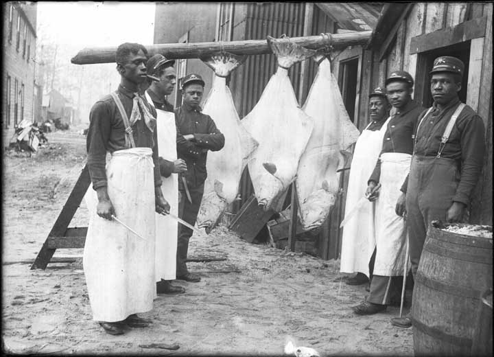 Buffalo Soldiers in Dyea prepare halibut for a fresh meal for their army unit. (Photo courtesy of the Alaskan State Library ASL- P226-868)