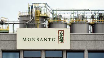 The Monsanto logo on a building at the firm Manufacturing Site and Operations Center near Antwerp, Belgium, on May 24. (Photo by John Thys/AFP/Getty Images)