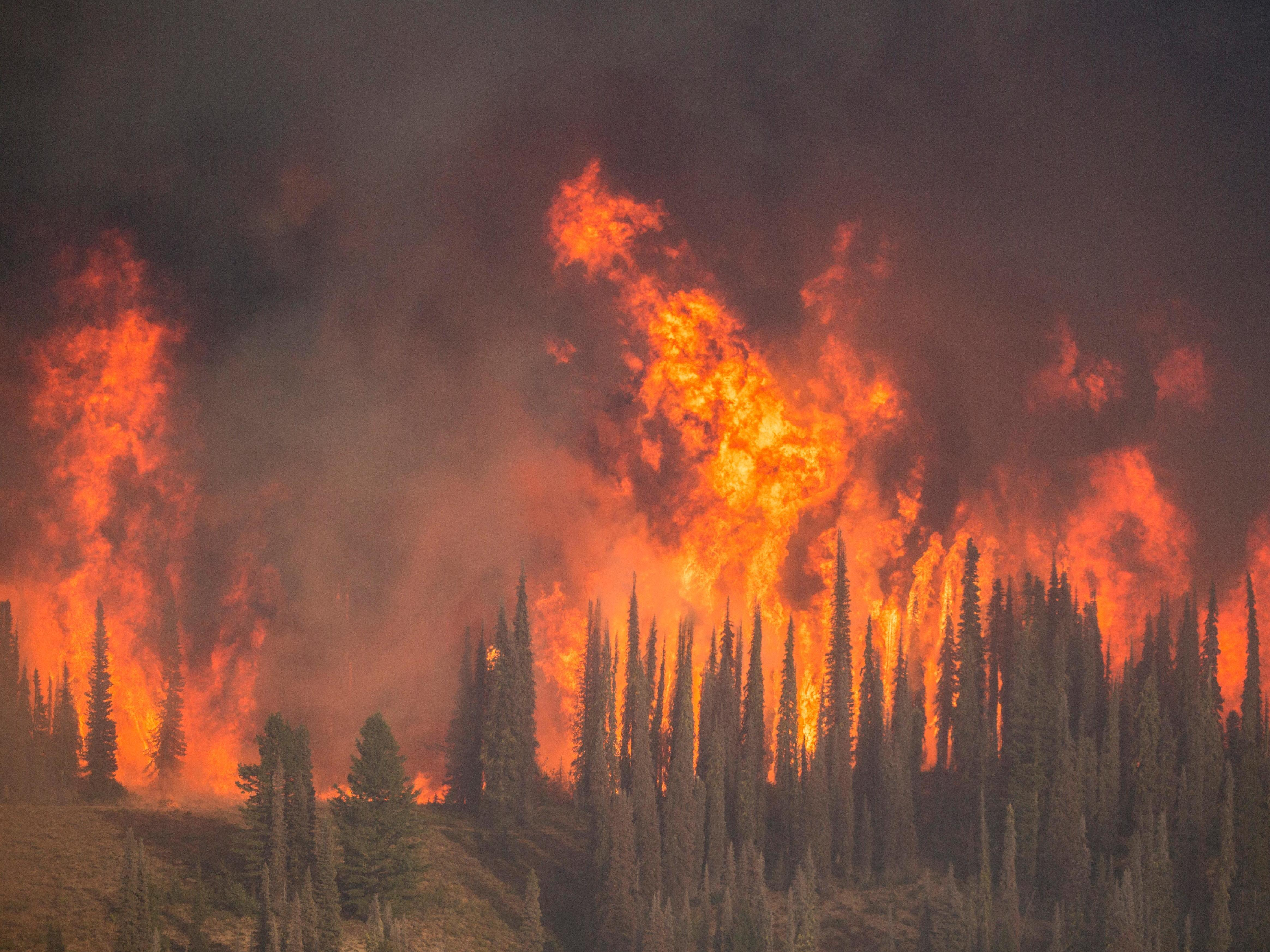 The Pioneer Fire has been burning in Idaho since July, and hot, dry weather caused the fire to grow rapidly this week. (National Forest Service)
