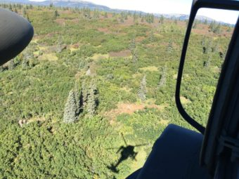 Crash site of one of the planes. The plane is visible just above the helicopter's shadow. (Alaska State Troopers)