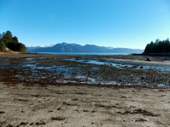 The tide is out at the borough's Sandy Beach Park. Native petroglyphs, fish traps and the borough property to be sold in January are near the point at the left of the photo. (KFSK file photo)