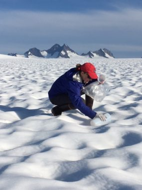 Surface samples were collected from the Juneau Icefield in July 2016 to determine how much black carbon or soot had been deposited without any precipitation.