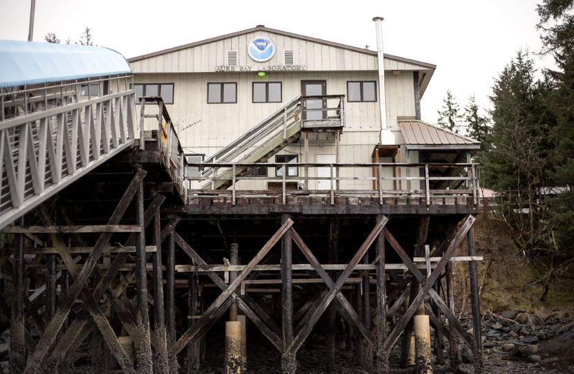 The Auke Bay Marine Station on Tuesday, Jan. 31, 2017. Juneau Docks and Harbors is interested in the property for a potential expansion of Statter Harbor. (Photo Tripp J Crouse/KTOO)