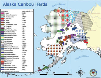The working group voted to support a proposed change to a registration permit hunt in units 21, 23, 24, and 26. (Map by Alaska Department of Fish and Game)