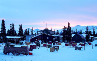 The view of the dog lot at Husky Homestead outside Denali on January 26, 2017 (Photo by Zachariah Hughes/Alaska Public Media)