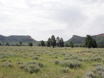 The Bears Ears buttes near Blanding, Utah, have been named a national monument by President Obama.
