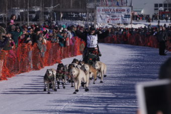 Teams began the journey to Nome from the re-start at Willow Lake in Iditarod 44. (Photo by Ben Matheson/Alaska Public Media)