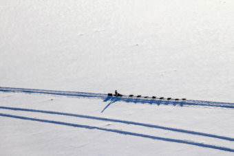 A team travels on the Iditarod trail to Tanana. (Photo by Ben Matheson/KNOM)