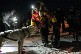 Mitch Seavey was the first musher to reach Huslia on Thursday night, March 10, 2017, during the Iditarod. (Photo by Ben Matheson/KNOM)