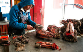 Butcher Joel Jorgensen skins reindeer heads at a roadside market in Nuuk. John W. Poole/NPR