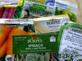 Seed packets can be purchased in local stores or online.