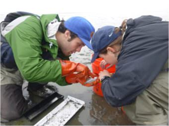 Doug Duncan and Emily Whitney work at one of the sampling sites. Photo courtesty of Emily Whitney. (Click image for larger version, 2.3 MB.)