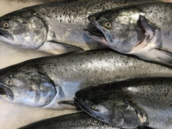 King salmon at a market in Seattle.