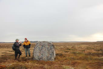 Fish and Game wildlife biologist Nelly Nesvacil and Oregon State University assistant professor Don Lyons set up a camouflage tent near the water in Dillingham. The duo are trying to determine an accurate Aleutian tern count. (Photo by KDLG)