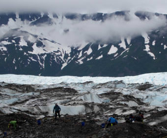 Members of the 11-person crew excavate 40-by-40 meter squares along a grid on the Colony Glacier in June of 2016. Media were kept at a distance from the perimeter, to keep from inadvertently photographing remains. (Photo by Zachariah Hughes/Alaska Public Media)