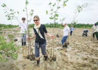 Mangrove forest ecosystems are critical to the coastal zones of Vietnam because they help to sustain food security and ecosystem function. Clare and the rest of her group helped plant some.